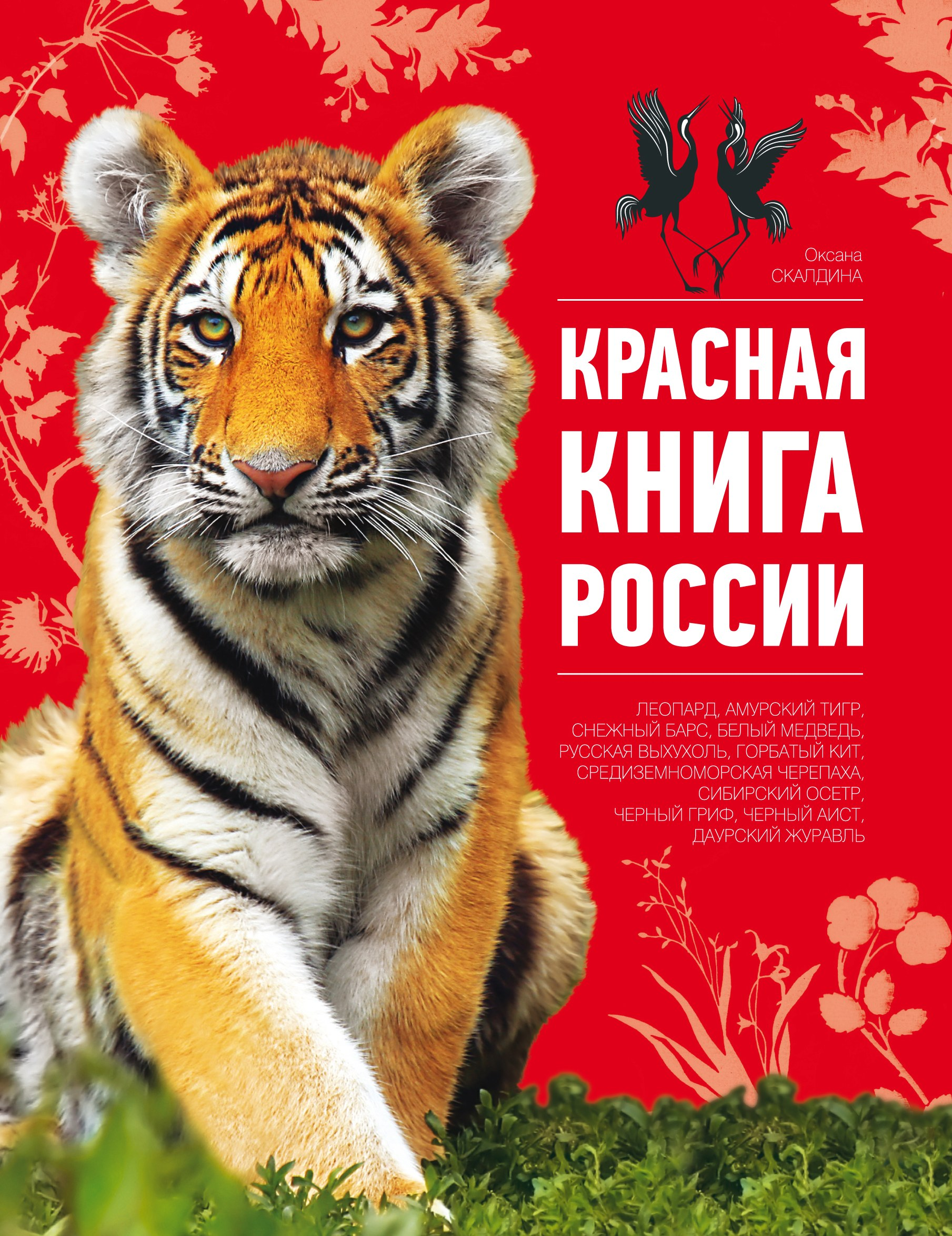 Животные красной книге картинки