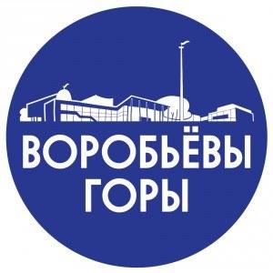 логотип-дворца-300x300